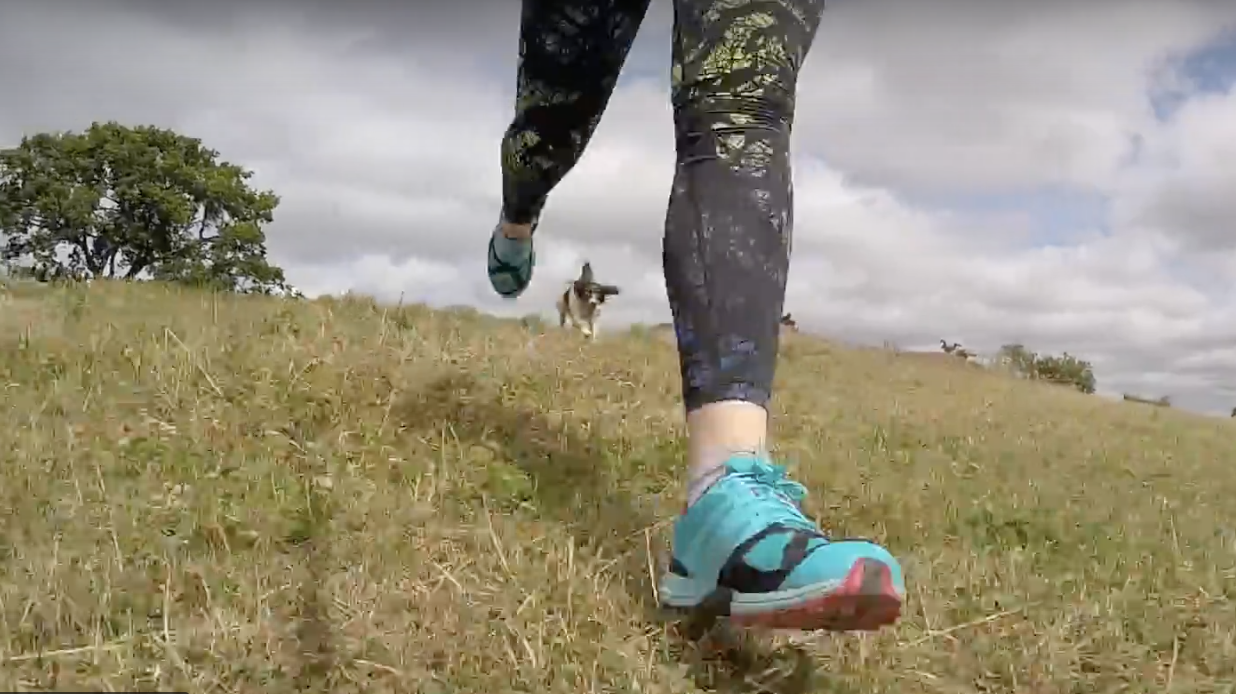 Video: running with dogs