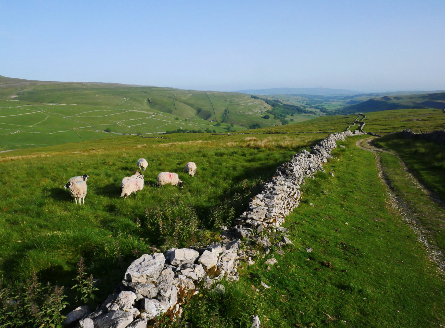 Cam Head from Kettlewell | Yorkshire Dales